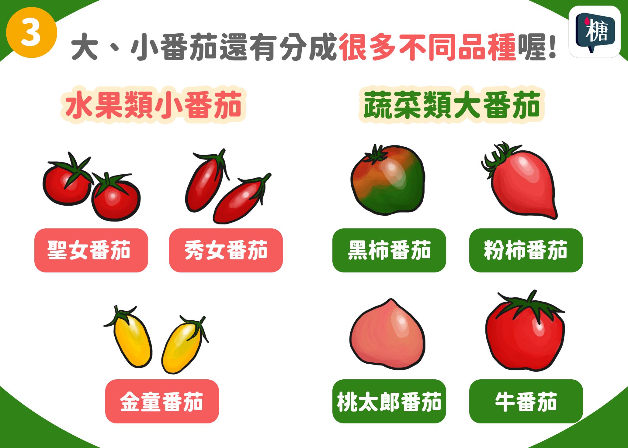小番茄是水果類,大番茄是蔬菜類!